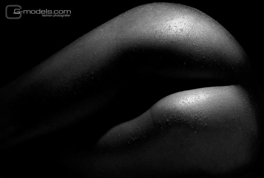 Изгибы. Фотограф Геннадий Працевич